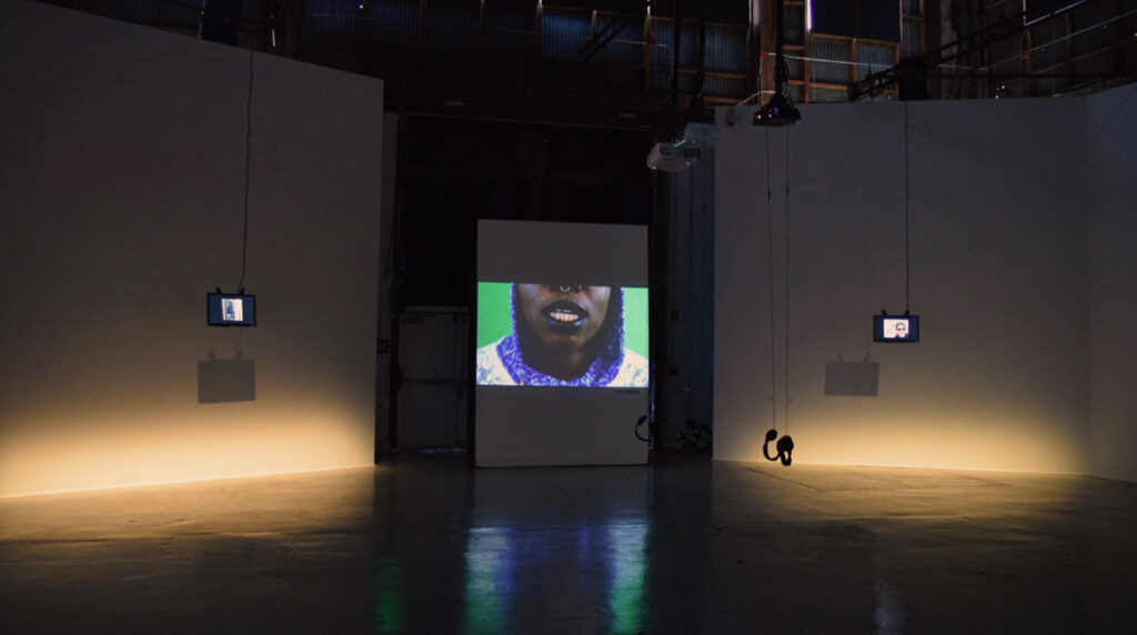 portrait of Ifekoya installation shot